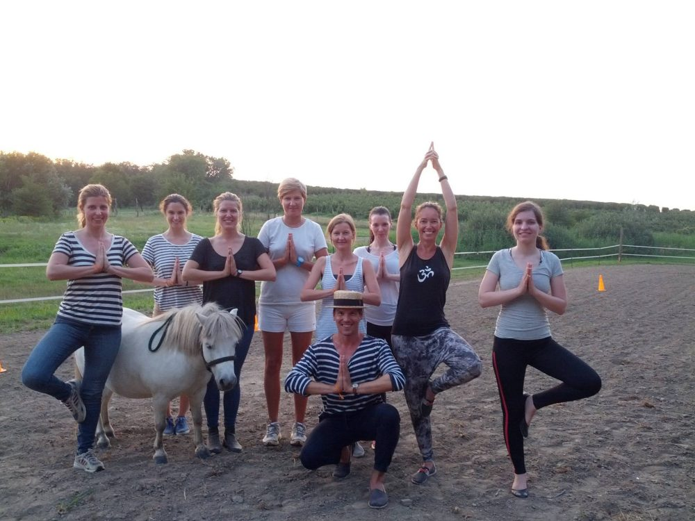 yoga horse therapy